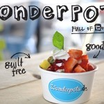 Wonderpots Frozen Yogurt Crowdfunding
